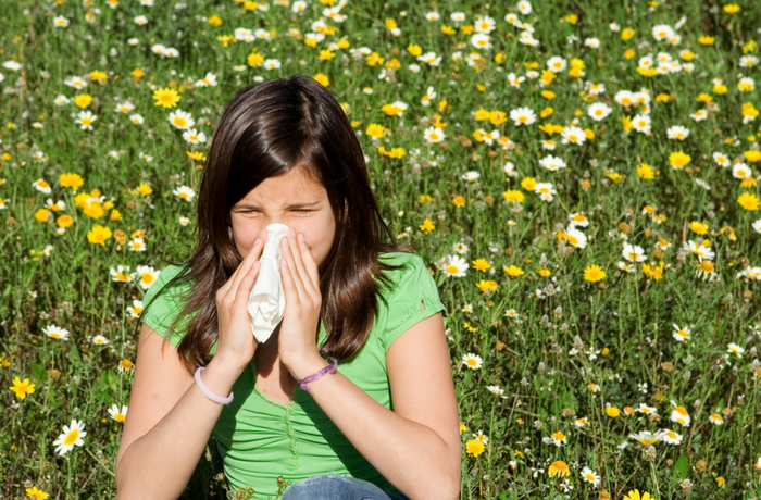Top tips to survive hay fever season