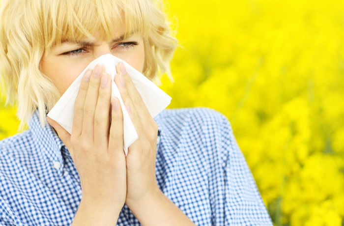 Natural product recommendations for Sneezing Season!